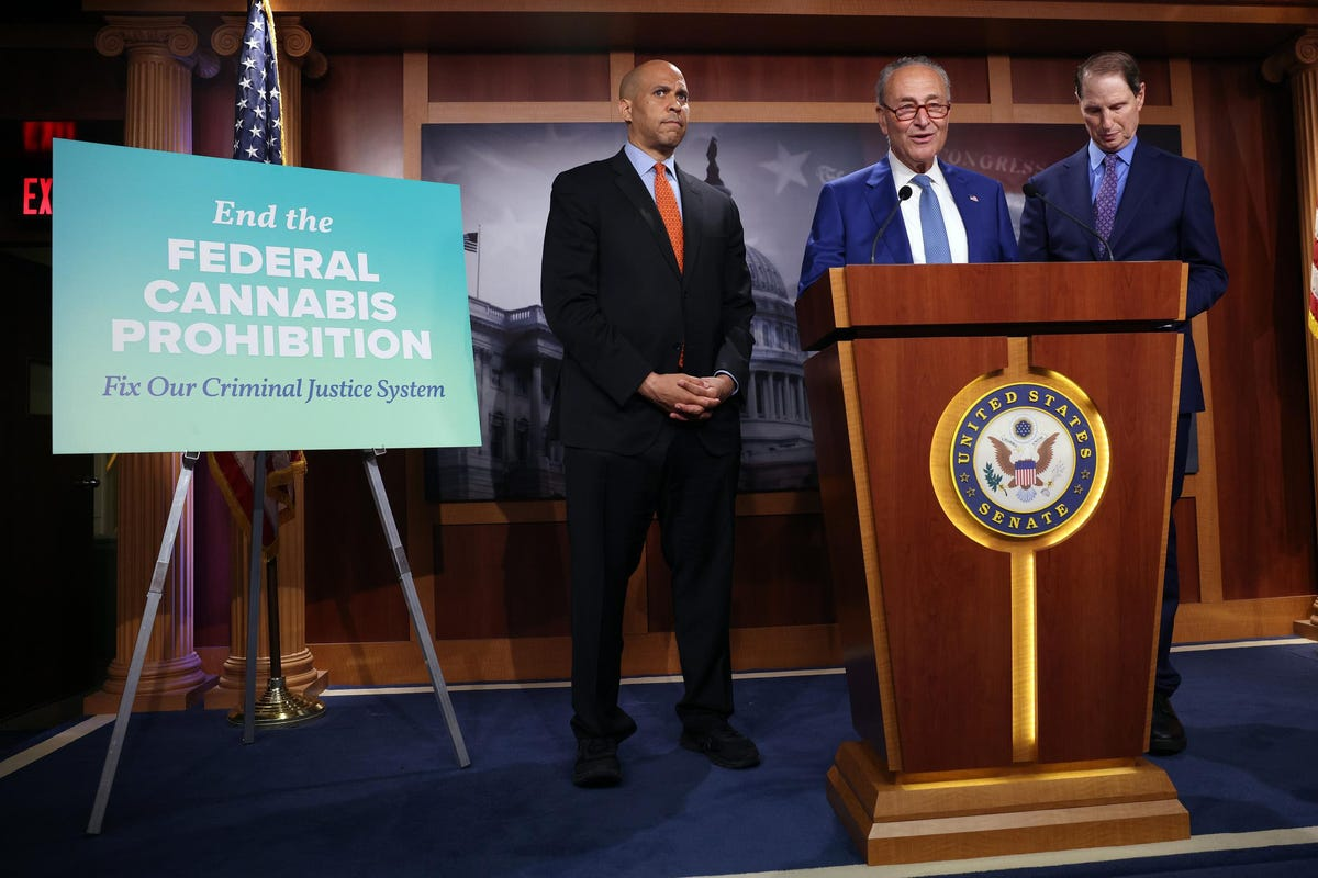 Predicting Politics In The Cannabis Legalization Debate