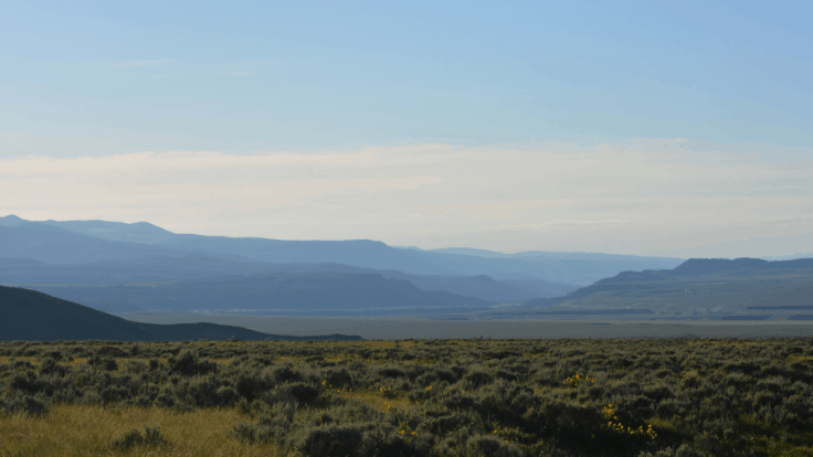 Montana Adult-Use Cannabis Sales Set to Begin in January 2022 -