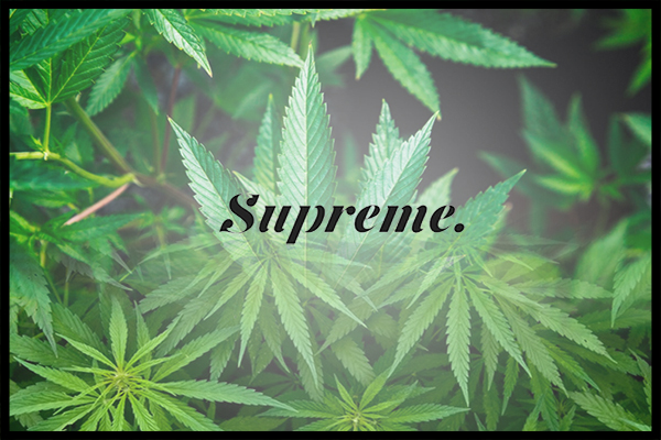 Canopy Completes Its Purchase Of Supreme
