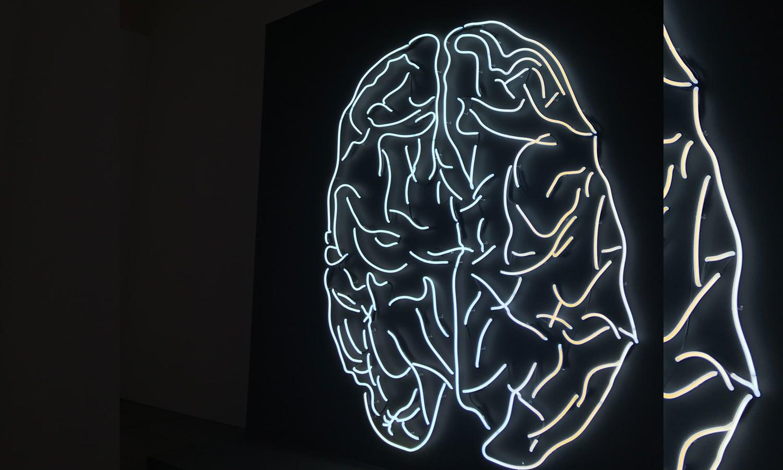 Study Confirms CBD Could Protect Brain Against Neurodegenerative Diseases