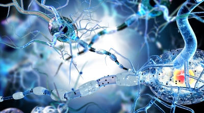 Is Cannabidiol a Miracle Cure for Epilepsy?