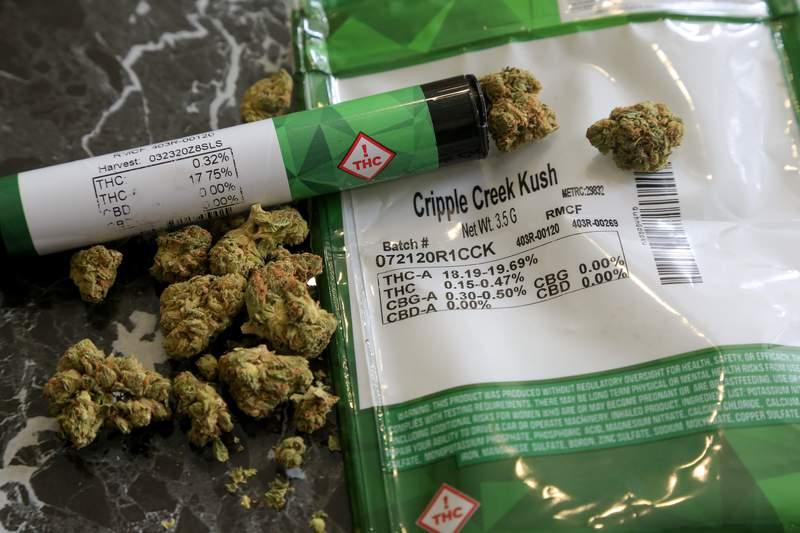 Florida Supreme Court says no to marijuana ballot proposal