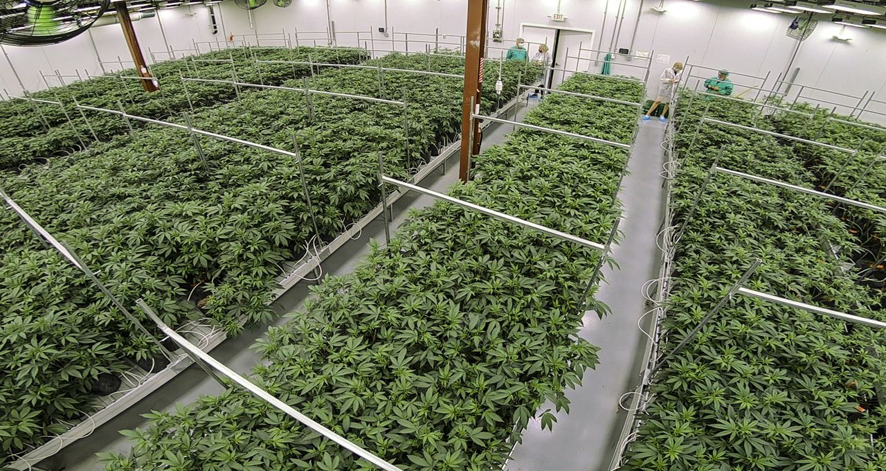 N.J.'s weed industry rules will come this week, bringing state a big step closer to legal sales