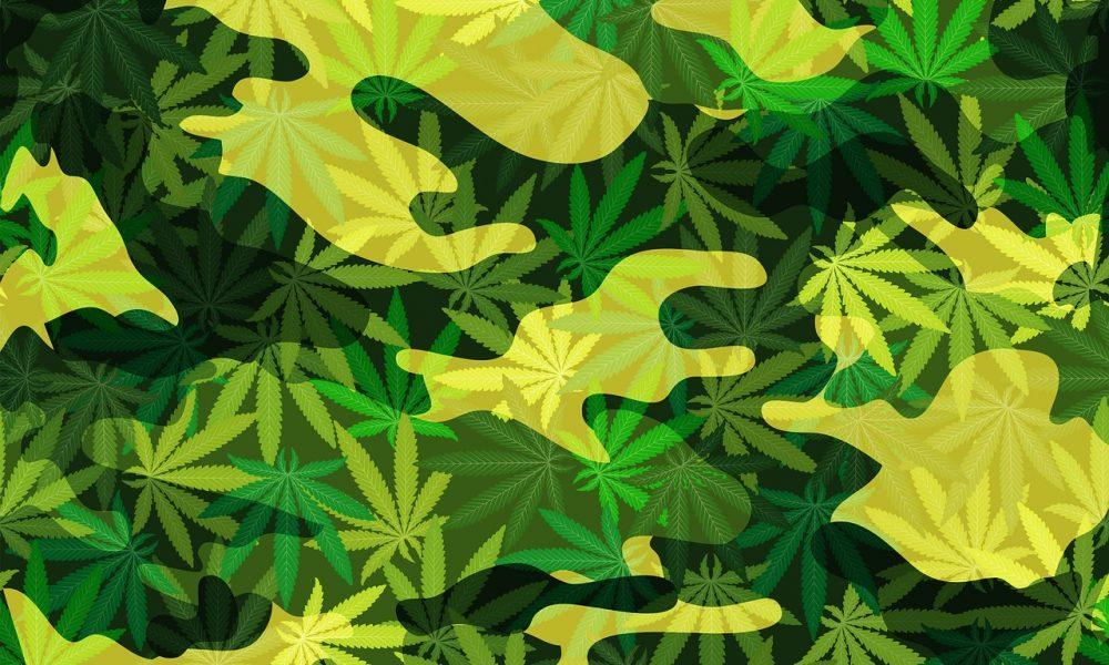 Senators Vote To Expand Medical Marijuana Access For Military Veterans In Key Committee