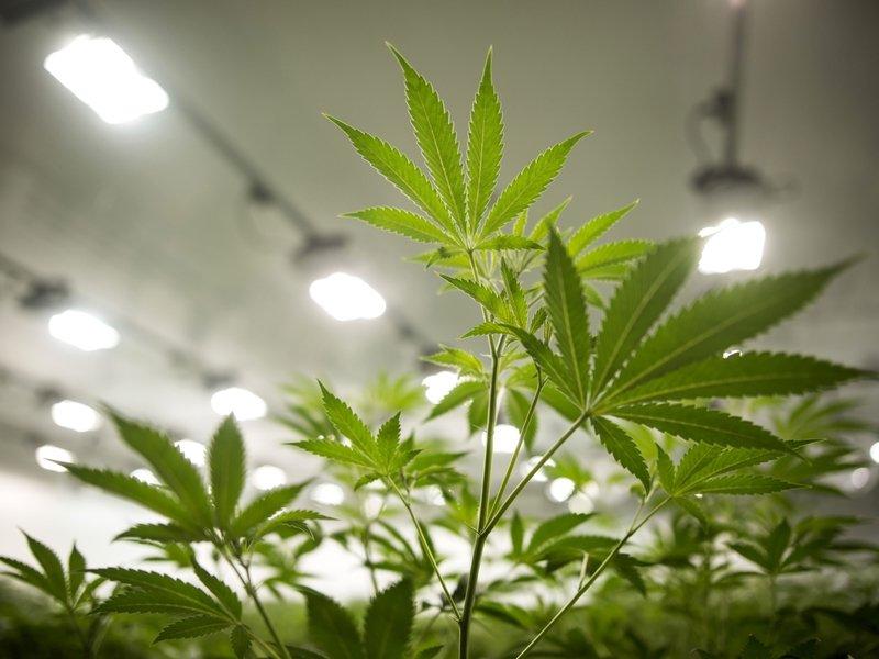 Illinois Gov. Pritzker signs new marijuana law