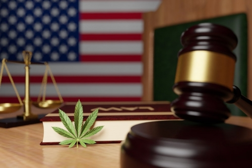 To Overturn Legal Marijuana, Mississippi Strikes Down the Democratic Process